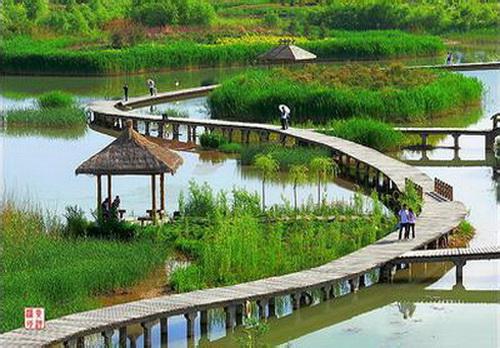 兰州银滩湿地公园