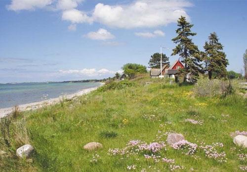 当理想照进现实:在丹麦萨姆岛感受零碳生活