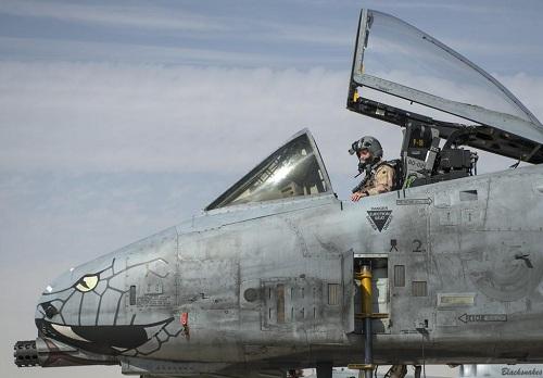 """猪年说""""猪"""",美国A10疣猪攻击机,外表强悍战斗力更加强悍!"""